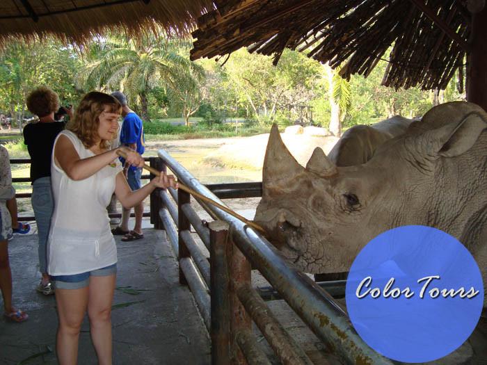 Экскурсии Паттайи: зоопарки