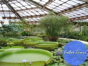 Ботанический-сад-Петра-Великого