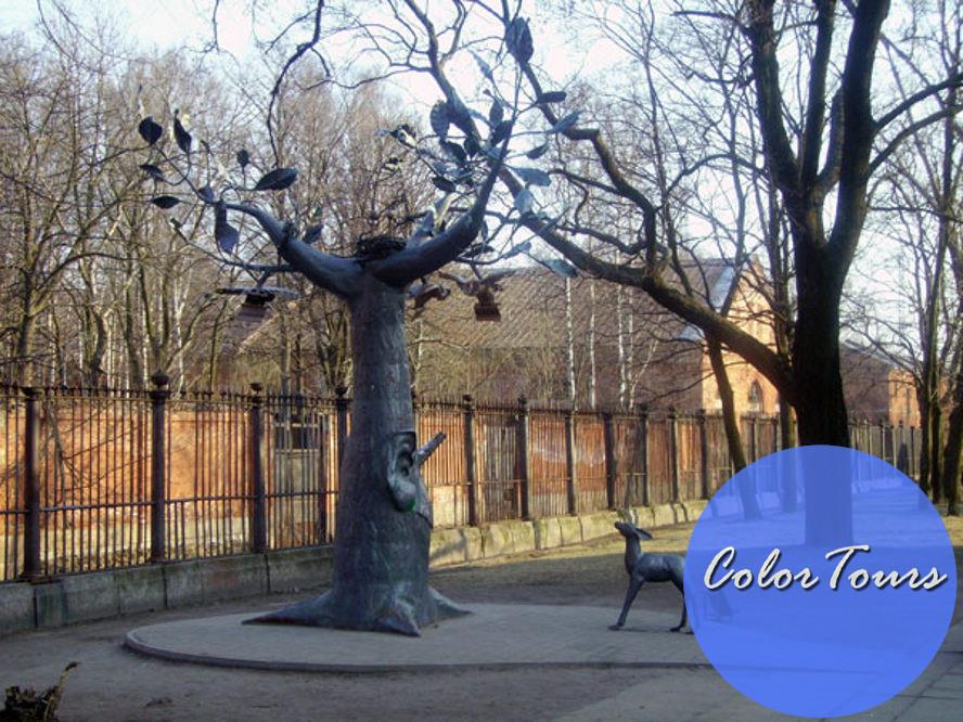 дерево желаний в Кронштадте