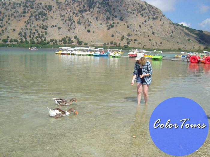 Кормить гусей на озере Курнас