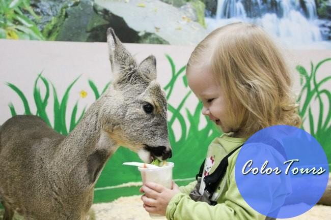 маленький мир - контактный зоопарк в Москве