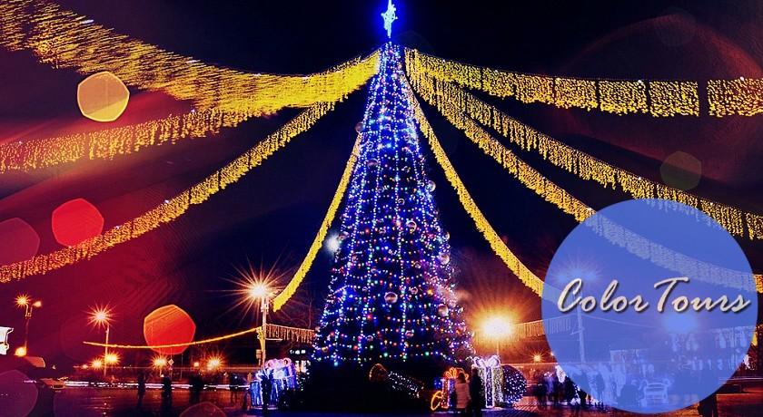Лучшие новогодние ёлки Беларуси