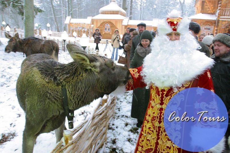 Куда съездить на Новый год в Беларуси